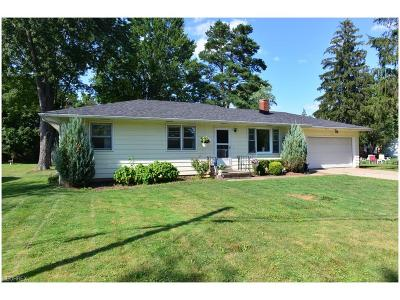 Chippewa Lake Single Family Home For Sale: 358 Briarwood Blvd