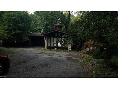 Strongsville OH Single Family Home For Sale: $95,000