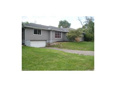 Perry OH Single Family Home For Sale: $64,999