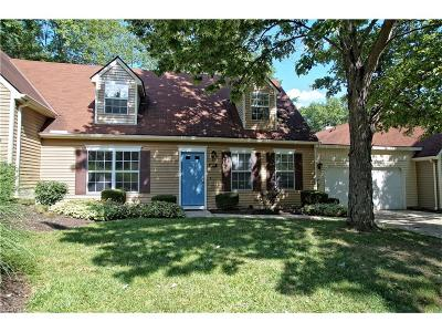 Summit County Condo/Townhouse For Sale: 2231 Pine Tree Ln #3