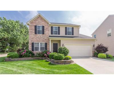 Willoughby Single Family Home For Sale: 38238 Waterford Dr