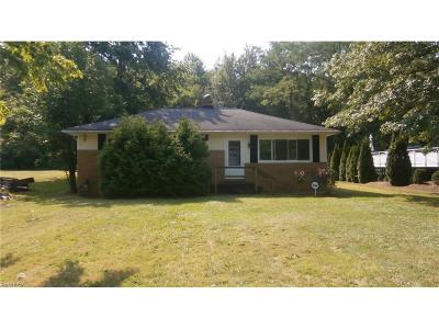Painesville OH Single Family Home For Sale: $35,900