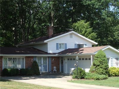 Brecksville Single Family Home For Sale: 9815 Whitewood Rd