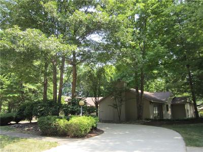 Meadowood Single Family Home For Sale: 21828 Meadows Edge Ln
