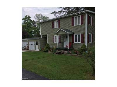 Geauga County Single Family Home For Sale: 10221 Stafford Rd
