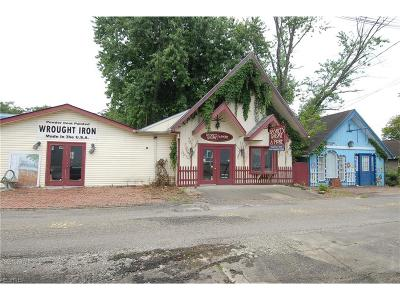 Muskingum County Commercial For Sale: 603 High St