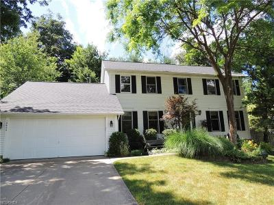 Twinsburg Single Family Home For Sale: 10424 Oviatt Ln