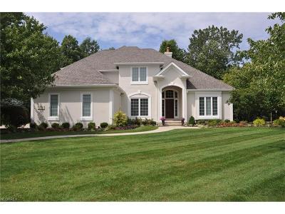 Westlake Single Family Home For Sale: 2172 Silveridge Trl