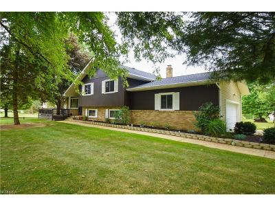 Chagrin Falls Single Family Home For Sale: 18358 Snyder Road
