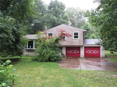 Geauga County Single Family Home For Sale: 8873 Ranch Dr