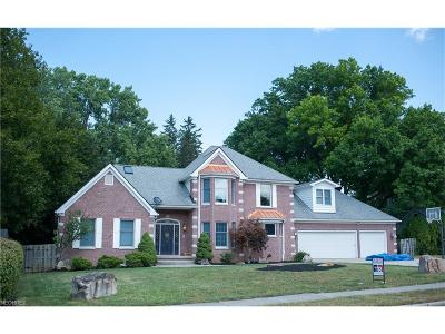 Cuyahoga County Single Family Home For Sale: 19850 Parklane Dr