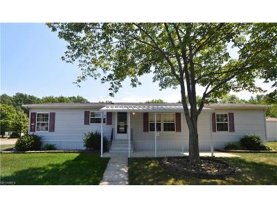 Olmsted Township Single Family Home For Sale: 23 Carousel Ln