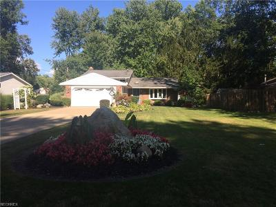 North Ridgeville Single Family Home For Sale: 6683 Pitts Blvd