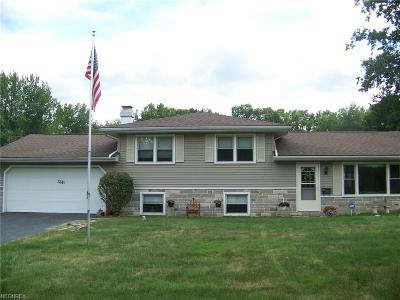 Youngstown Single Family Home For Sale: 3681 Bryant Dr