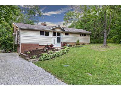 Geauga County Single Family Home For Sale: 11234 Walnut Ridge Rd