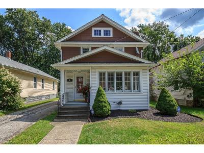 Painesville Single Family Home For Sale: 91 Chestnut St