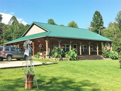 Guernsey County Single Family Home For Sale: 10799 Seminary Rd