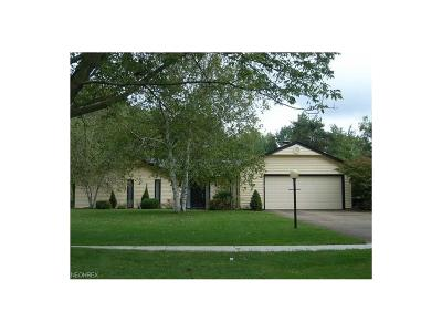 North Ridgeville Single Family Home For Sale: 5189 Meadow Moss