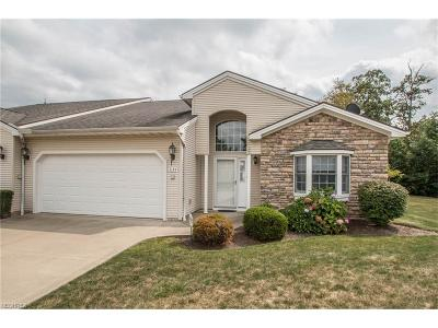 Twinsburg Single Family Home For Sale: 3134 Glenbrook Dr