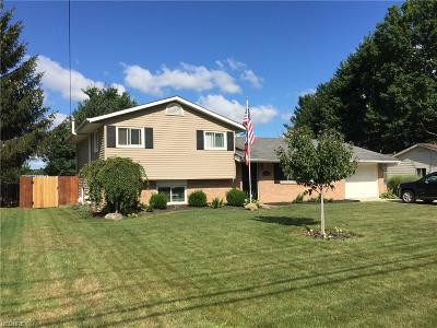 North Ridgeville Single Family Home For Sale: 6900 Pitts Blvd
