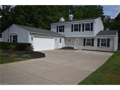 Westlake Single Family Home For Sale: 28375 Center Ridge Rd