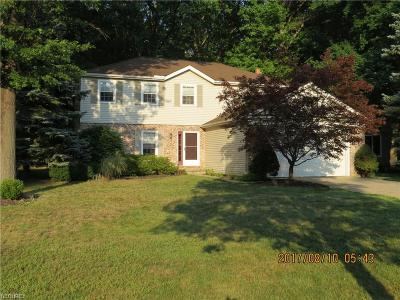 Westlake Single Family Home For Sale: 1975 Coes Post Run