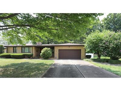 Youngstown Single Family Home For Sale: 1402 Leyton Dr