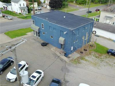 Zanesville Commercial For Sale: 976 McIntire Ave