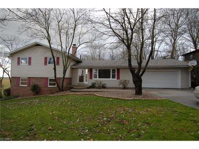 Zanesville Single Family Home For Sale: 2000 Shady Ln