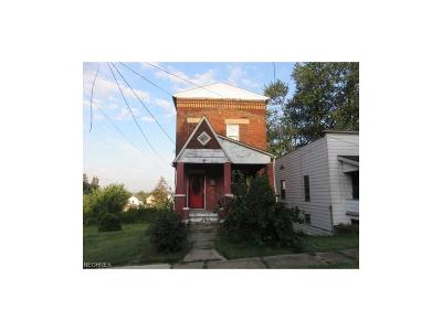 Girard Single Family Home For Sale: 238 Dearborn St