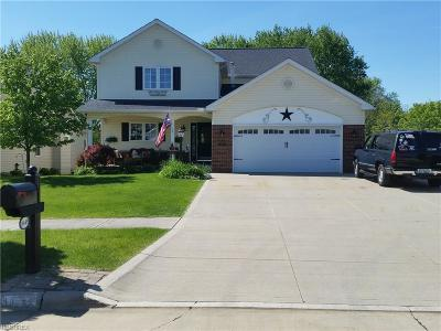 Single Family Home For Sale: 18449 Dale Dr