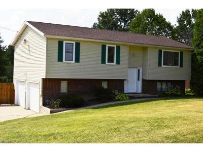 Ravenna Single Family Home For Sale: 2578 Meloy Rd