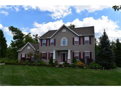 Geauga County Single Family Home For Sale: 12765 Big Creek Ridge Dr