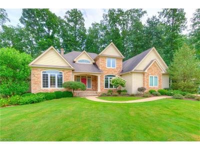 Solon Single Family Home For Sale: 6549 Dorset Ln