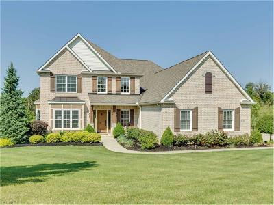 Medina Single Family Home For Sale: 3006 Sutton Ln