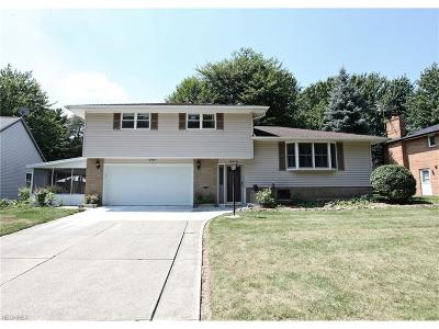 Middleburg Heights Single Family Home For Sale: 6590 Fairweather Dr