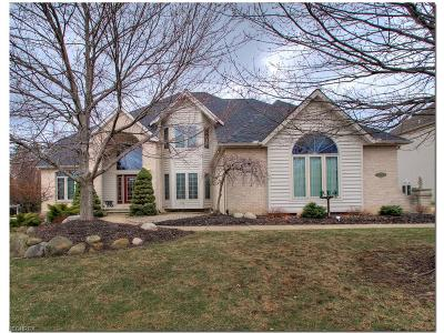 North Royalton Single Family Home For Sale: 10555 Queens Way