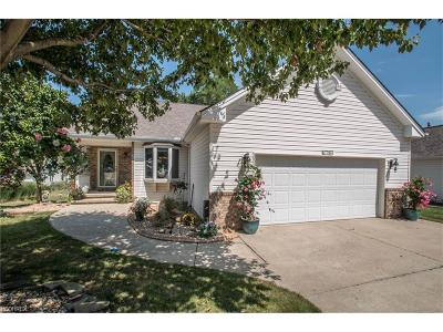 Strongsville OH Single Family Home For Sale: $264,900