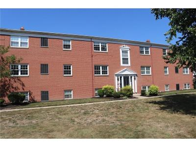 North Olmsted Condo/Townhouse For Sale: 23500 David Dr #C102