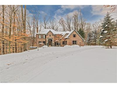 Chagrin Falls Single Family Home For Sale: 17128 Bridgeway Dr
