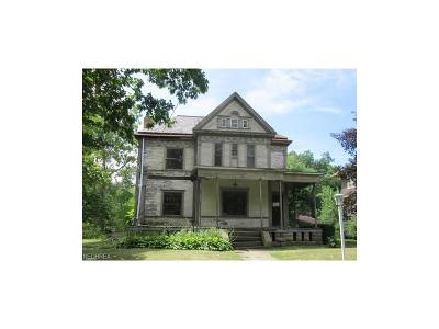 Youngstown Single Family Home For Sale: 245 North Heights Ave