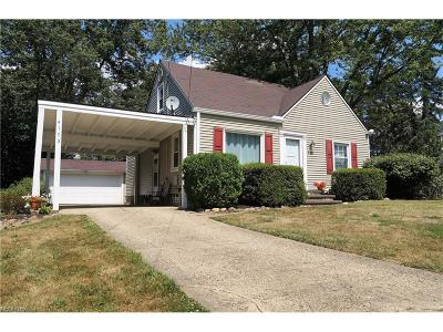 Ravenna Single Family Home For Sale: 4103 Summit Rd