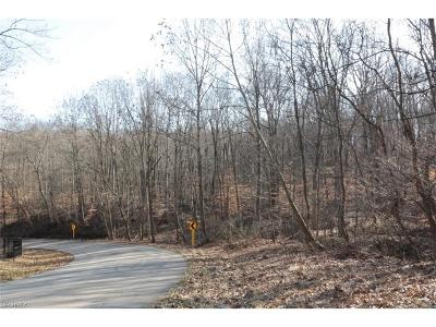 Muskingum County Residential Lots & Land For Sale: 250 Hale Rd