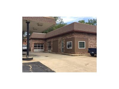 Stark County Commercial For Sale: 315 Cherry St