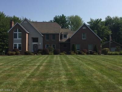 Ashtabula County Single Family Home For Sale: 1123 State Route 307