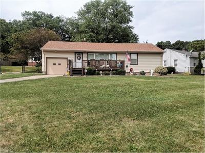 Youngstown Single Family Home For Sale: 2496 Gladwae