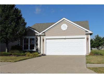 North Ridgeville Single Family Home For Sale: 9318 Grist Mill Dr