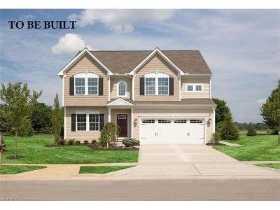 North Ridgeville Single Family Home For Sale: 37723 Plymouth Trace