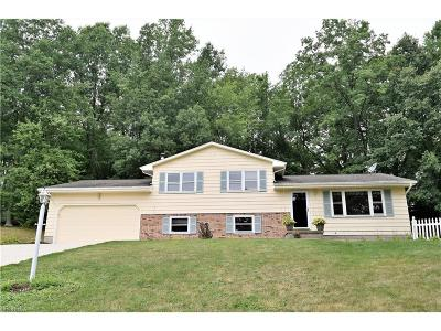Canfield Single Family Home For Sale: 550 Woodbury Ct