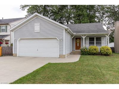 North Ridgeville Single Family Home For Sale: 5943 Eastview Ave